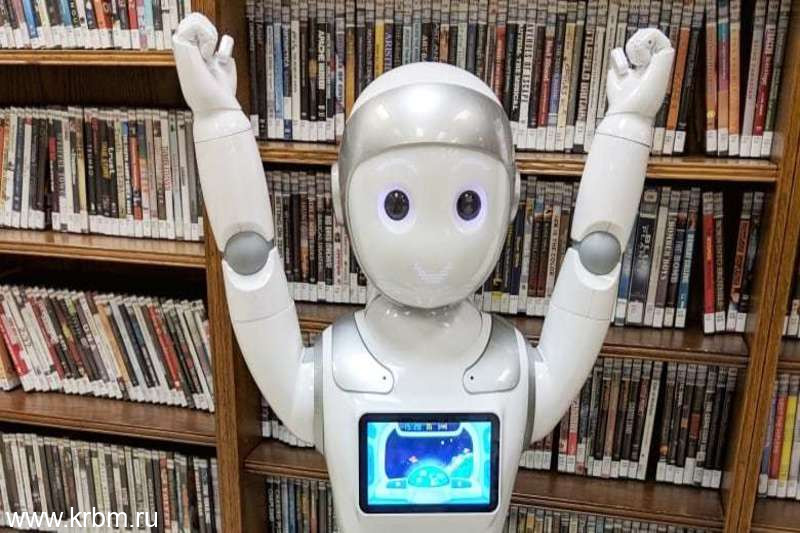 ipal-robot-guelph-public-library.i8tbG